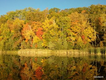 One of my favorite ways to view fall colors is from the water. Explore a lake like glass in a canoe!