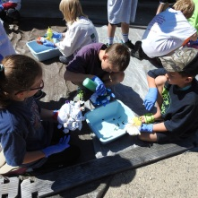 Tie-dying is always a hit!
