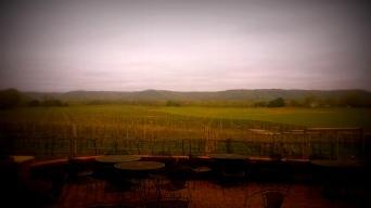 Picturesque Elmaro Winery