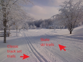 skate-and-classic-trails