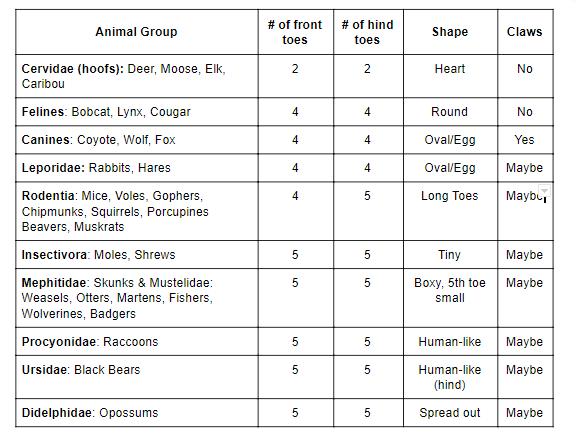 Mammal Track Summary Chart