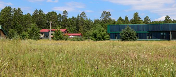 nativeflowerscenterarea
